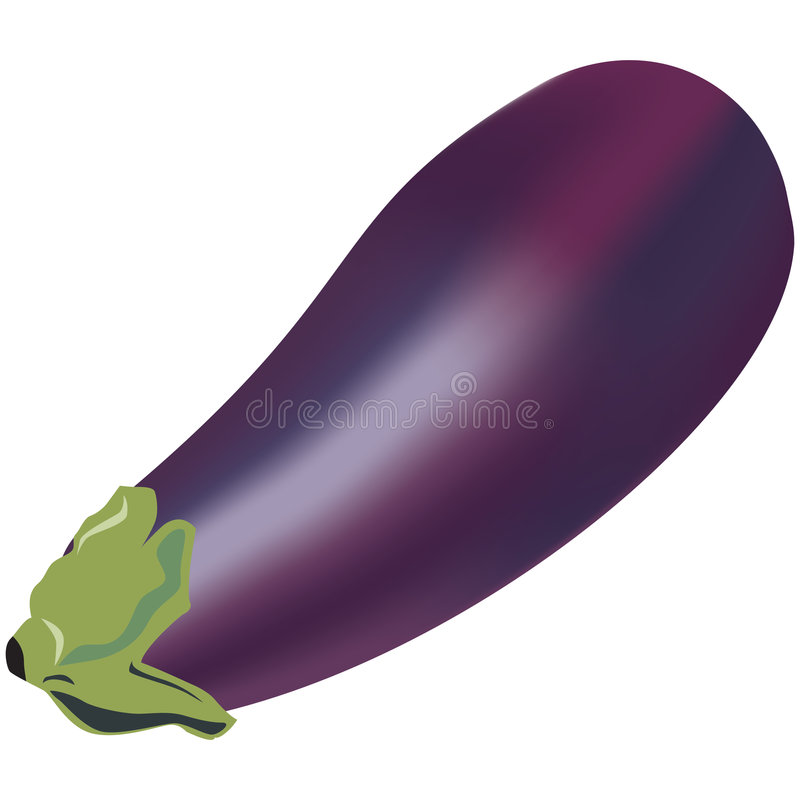 Aubergine stock illustratie