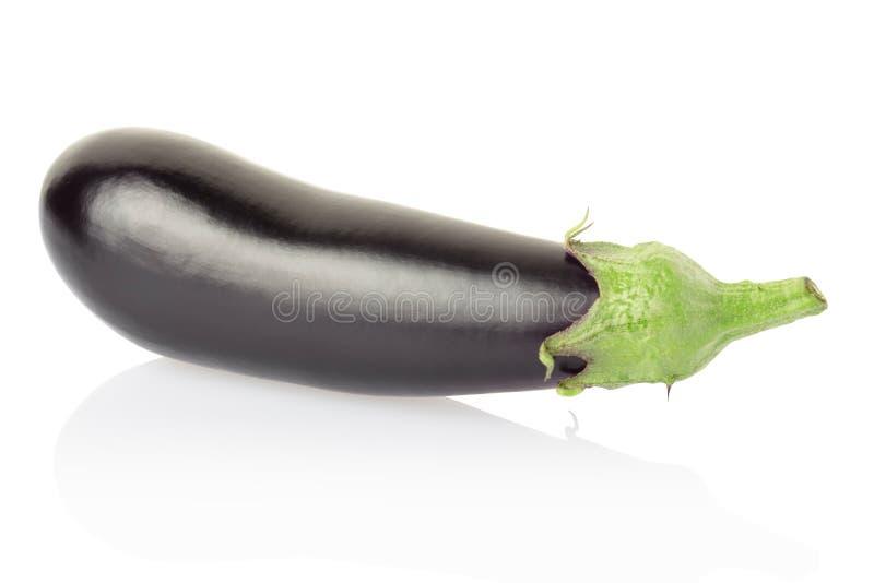 Aubergine of aubergine stock foto