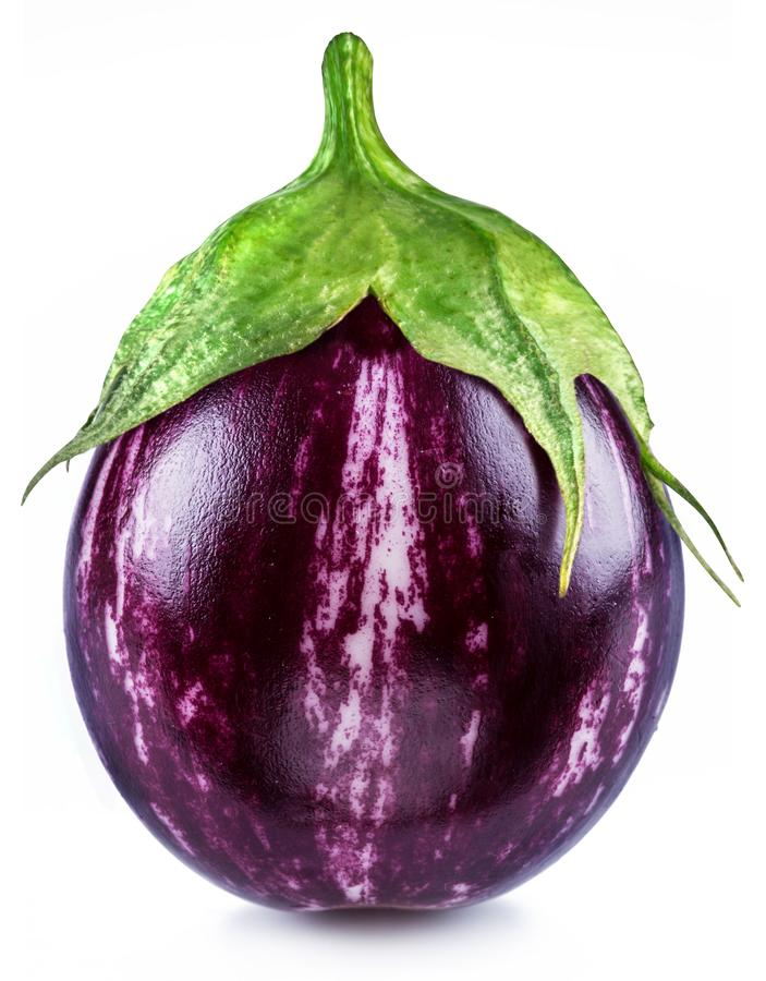 Aubergine or eggplant on white background stock images
