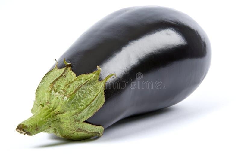 aubergine isolerad white royaltyfria foton