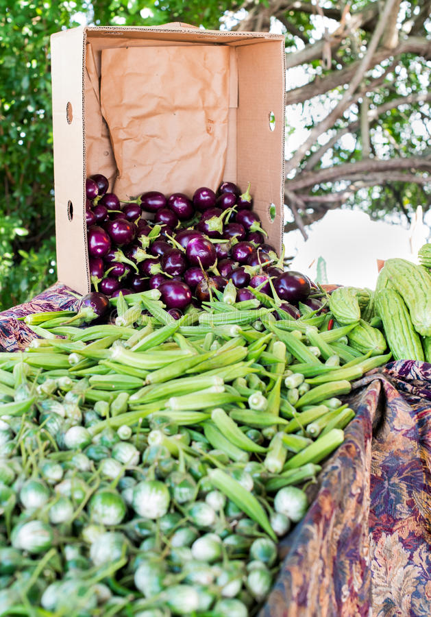 Aubergine met Okra stock afbeelding