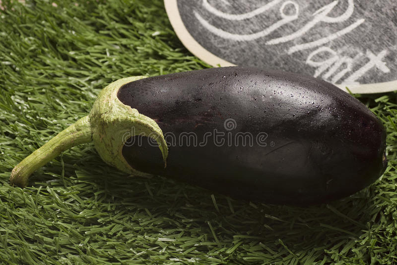 aubergine sur l'herbe avec des baisses de l'eau photo libre de droits