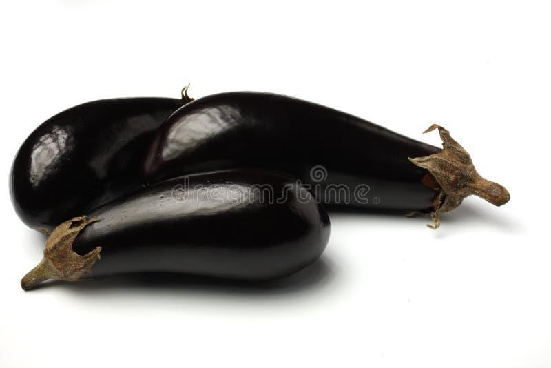 aubergines zdjęcia royalty free