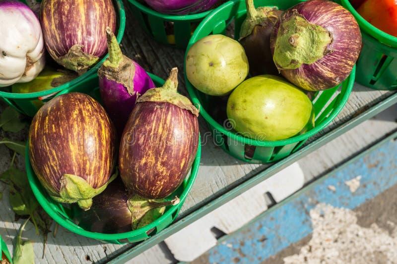 Download Aubergines d'Udumalpet image stock. Image du nutrition - 77151355