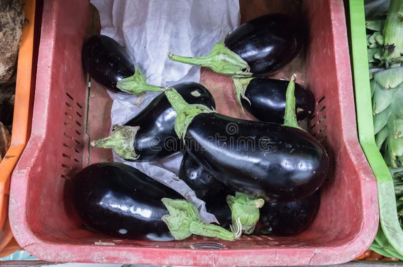 Aubergines in mand royalty-vrije stock foto