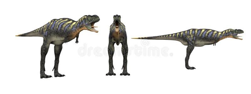 Aucasaurus Aislante del dinosaurio en blanco ilustración del vector