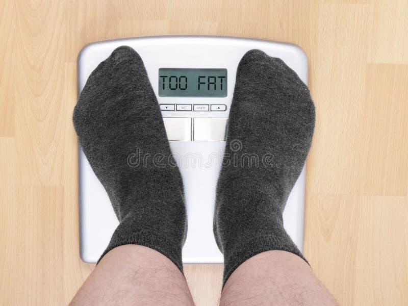 Auch Fett lizenzfreie stockfotos