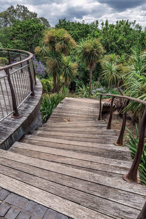 Auckland city park stock image