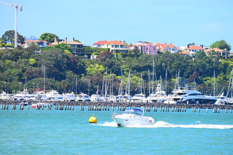 Auckland Devonport royalty-vrije stock foto's