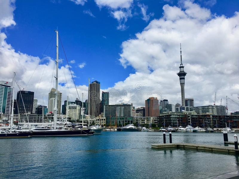 Auckland hamn och horisont royaltyfri foto