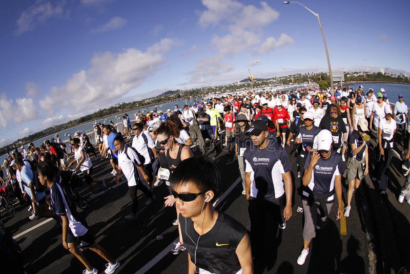 Auckland round the bays fun run stock image