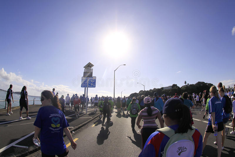 Auckland Round the Bays Marathon stock photography