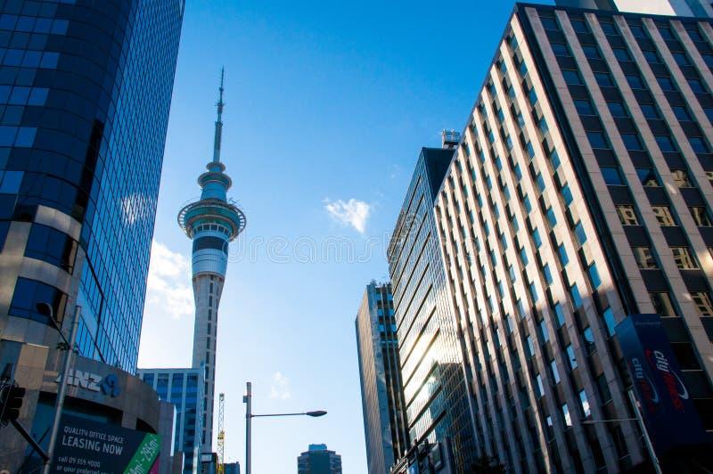 Auckland Skytower fotografia de stock royalty free
