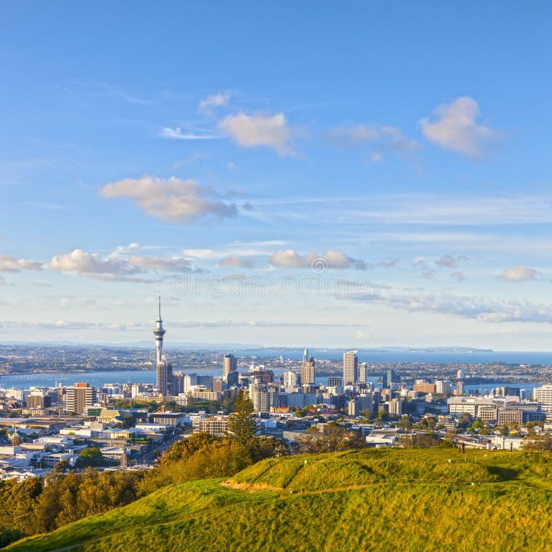 Auckland vom Berg Eden lizenzfreies stockfoto