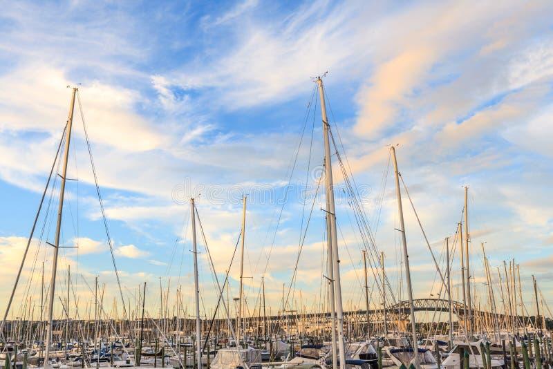 Auckland, Zealand novo 9 de dezembro de 2013 O porto de Westhaven é foto de stock royalty free