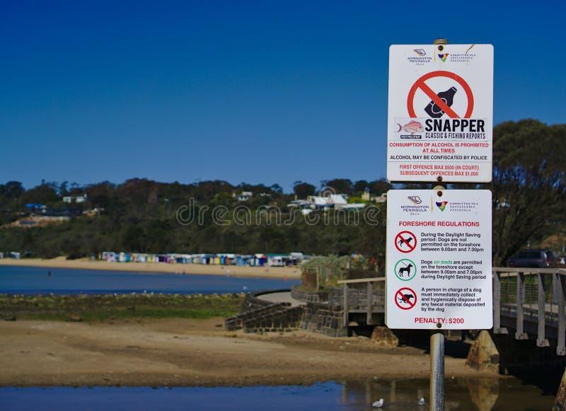 Aucun alcool aucun signe de chien à la plage image stock
