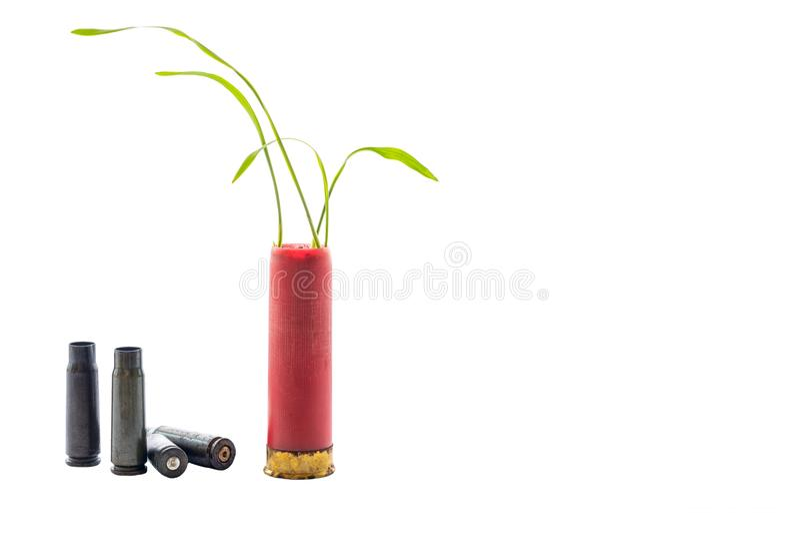 Aucune photo de concept de guerre Les pousses de l'herbe se développe hors du fusil de chasse rouge de cartouche d'arme à feu Fon photo stock