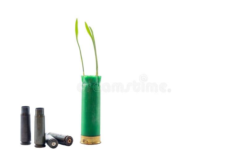 Aucune photo de concept de guerre Les pousses de l'herbe se développe hors de la cartouche verte d'arme à feu images libres de droits