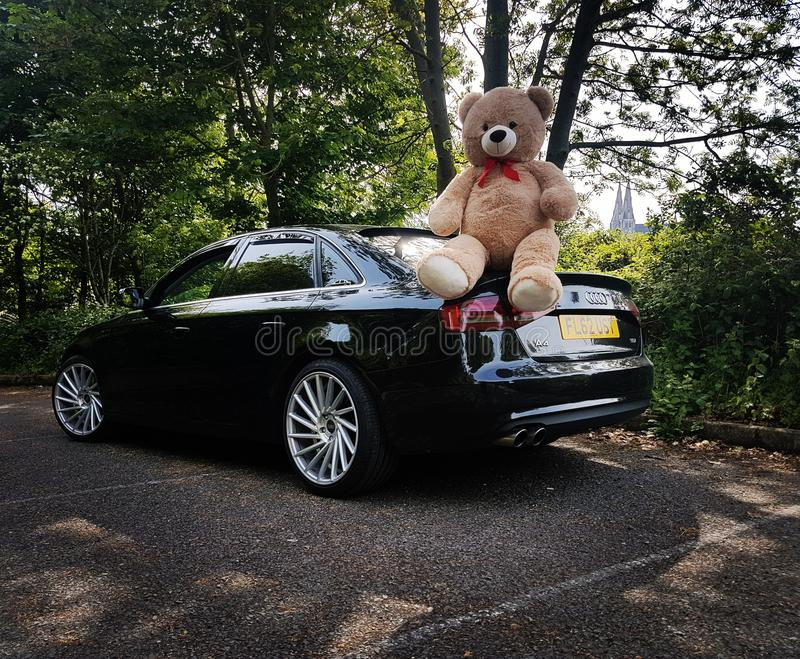 Audi A4B8 Bear love to girlfriend stock images