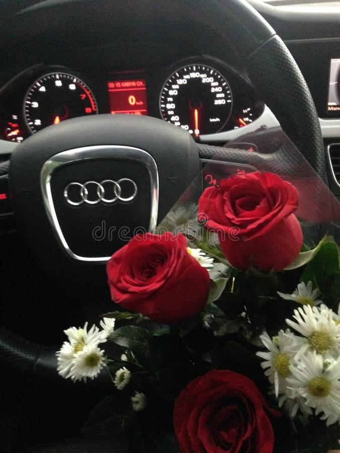 Audi och rosor arkivbild