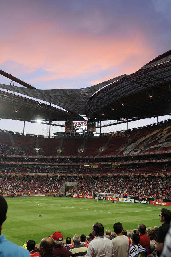 Soccer Stadium Crowd Fans, Football Arena Audience, Real People stock photo