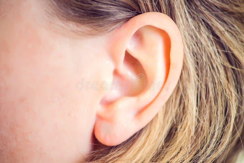 Audiencia, salud, belleza y concepto de perforación - cierre para arriba del oído de la mujer foto de archivo
