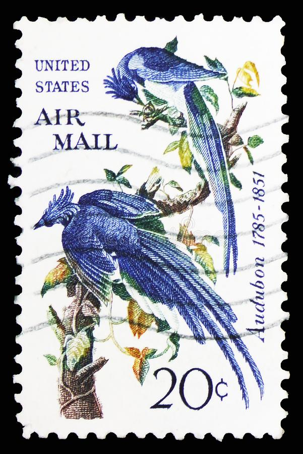 Audubon - Black-throated Magpie-jay (Calocitta colliei), Airmail 1952-1967 serie, circa 1967. MOSCOW, RUSSIA - FEBRUARY 10, 2019: A stamp printed in United stock image