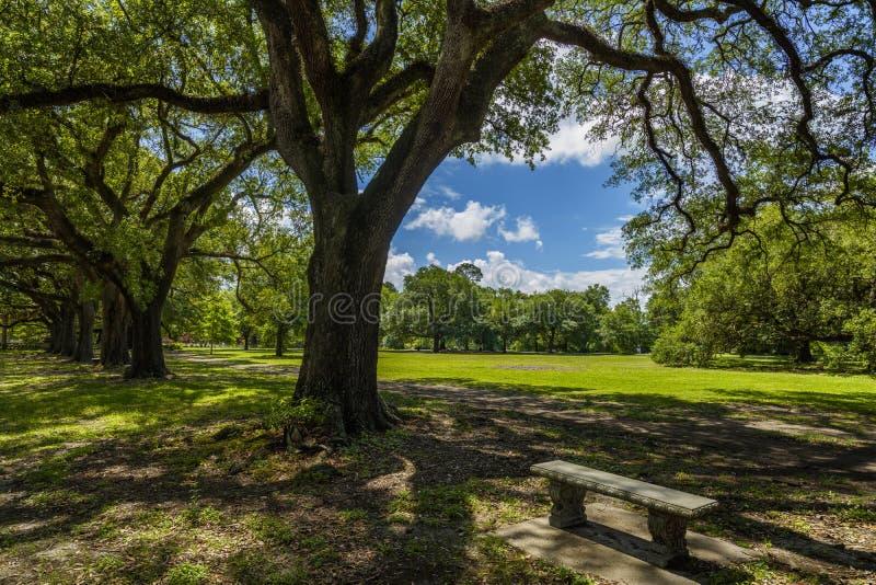 Audubon Park royalty free stock photos