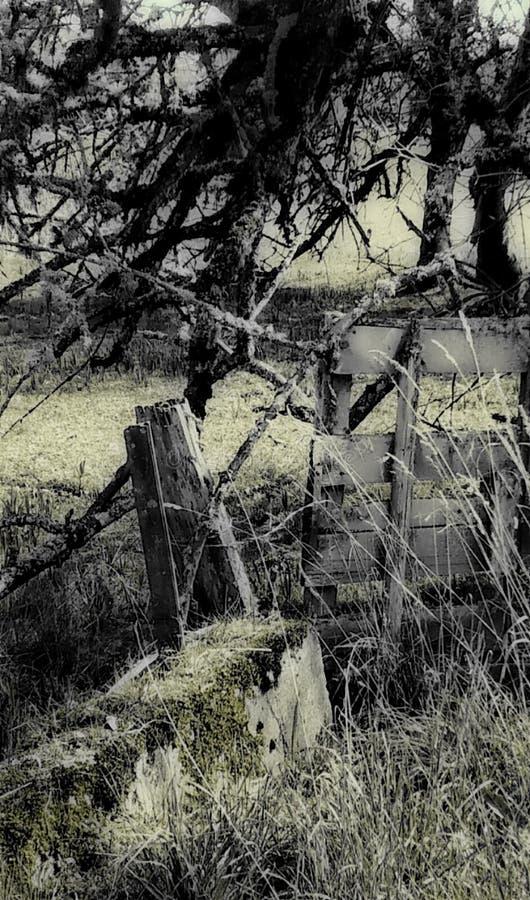 Auf dem Bauernhof lizenzfreies stockfoto