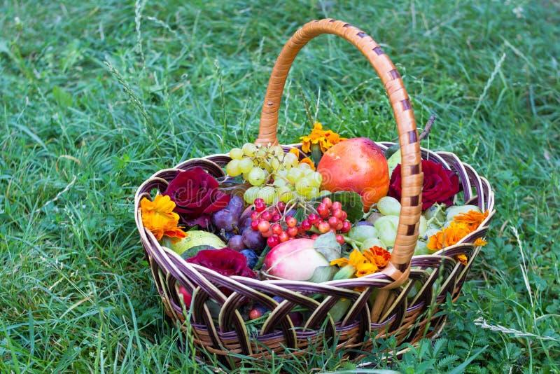 Auf dem Graskorb von Früchten stockbilder