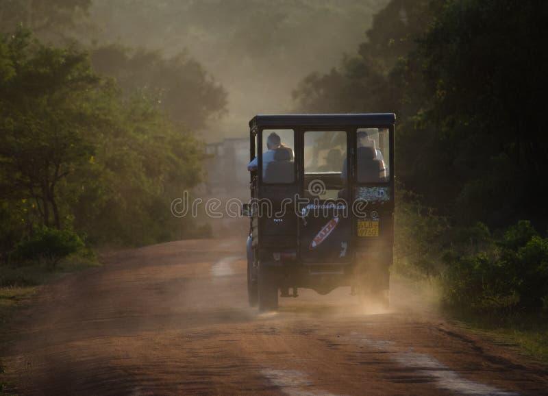 Auf dem Heimweg im Sonnenuntergang lizenzfreies stockfoto
