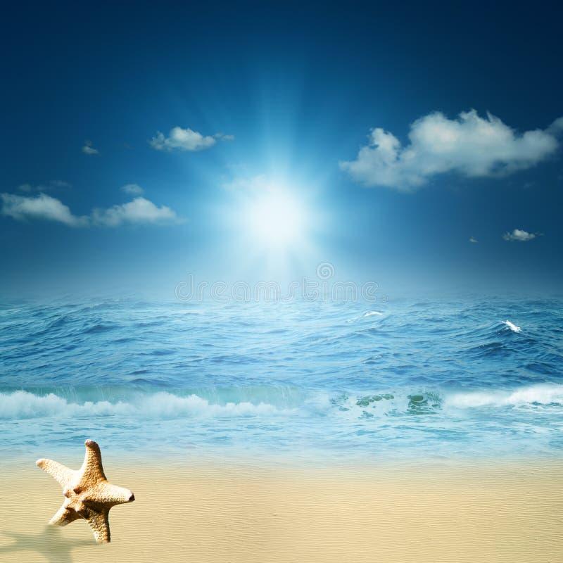 Auf dem Ozean. stockfotos