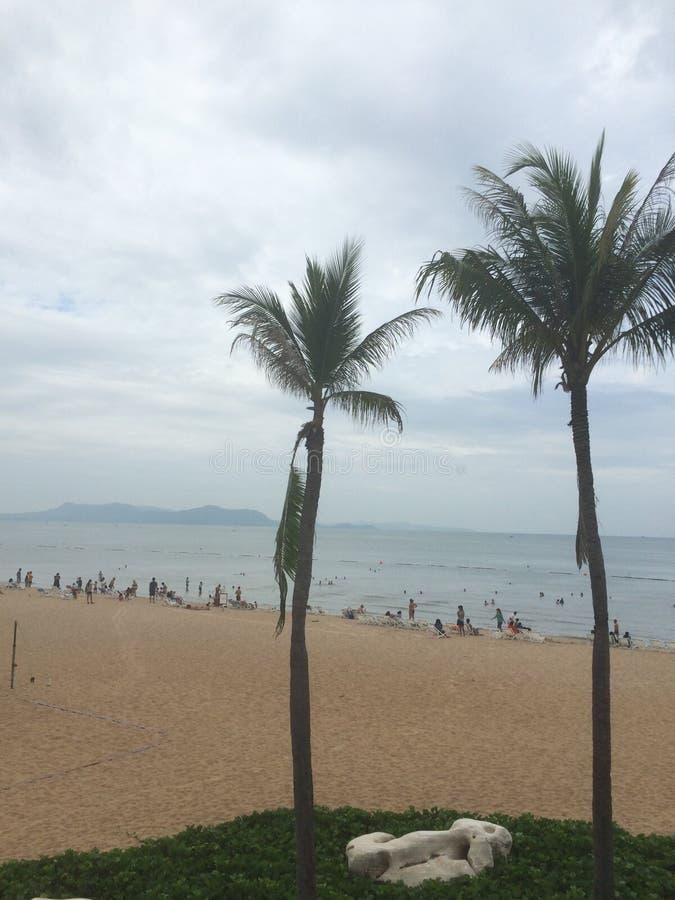 Auf dem Strand stockbilder