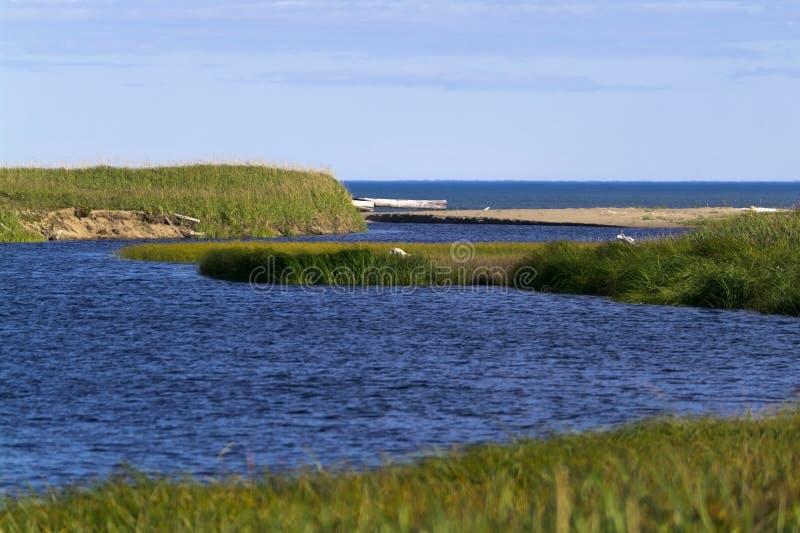 Download Auf Dem Ufer Des Meeres Von ââOkhotsk Stockbild - Bild von sakhalin, himmel: 27727507