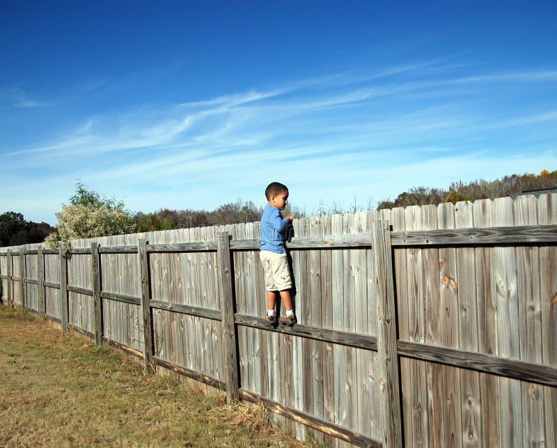 Auf dem Zaun stockfotografie