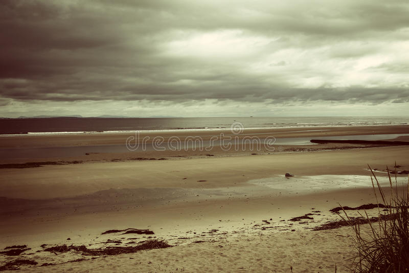 Auf der schottischen Küste lizenzfreie stockfotos