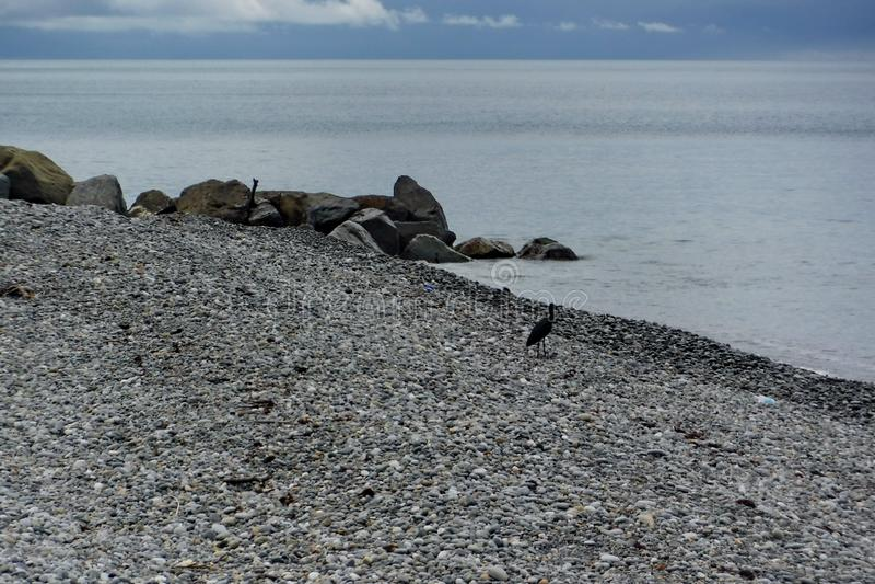 Auf der Schwarzmeerküste vor einem Gewitter stockfotografie