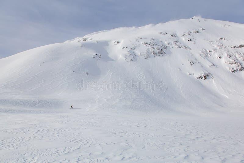 auf der Suche nach ` Schnee ` Mann lizenzfreie stockfotografie