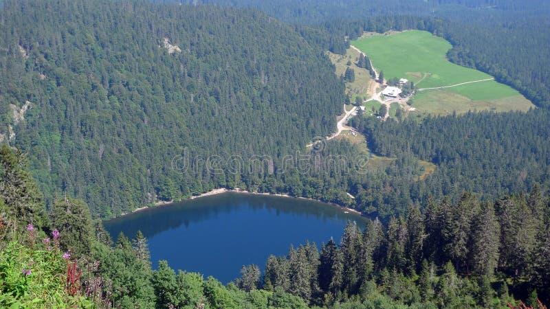 Auf die Oberseite des Berges lizenzfreies stockbild