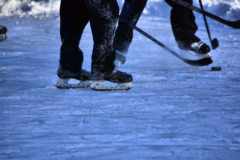Auf gefrorenem Teich lizenzfreies stockfoto