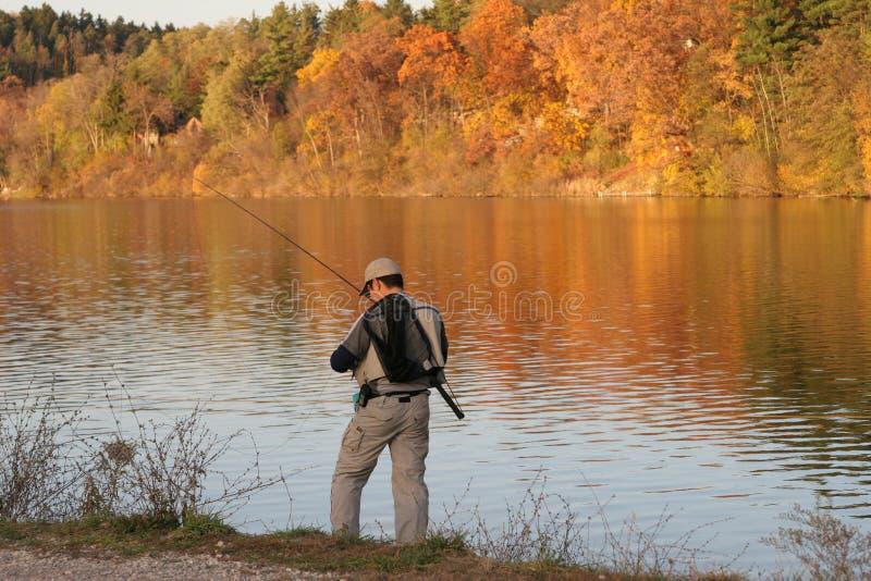 Auf goldenem Teich stockbild