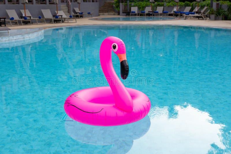 Aufblasbarer rosa Flamingo im Swimmingpool Krasnodar Gegend, Katya lizenzfreies stockfoto