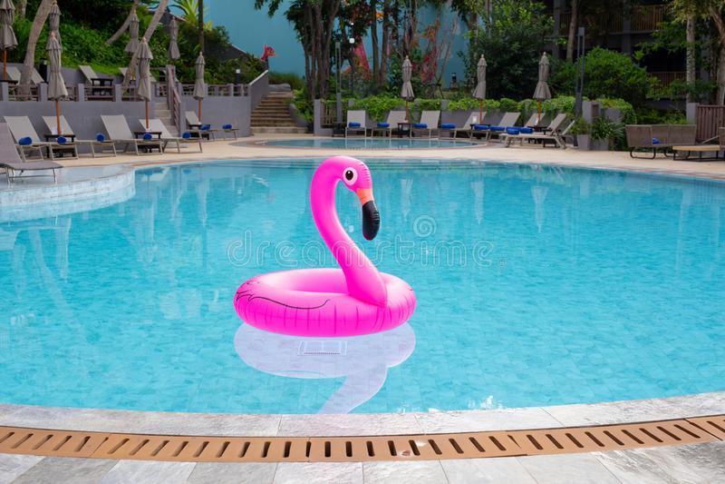 Aufblasbarer rosa Flamingo im Swimmingpool Krasnodar Gegend, Katya stockfotos
