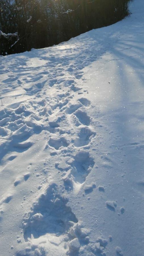 Auffällige Punkte des Schnees stockbild