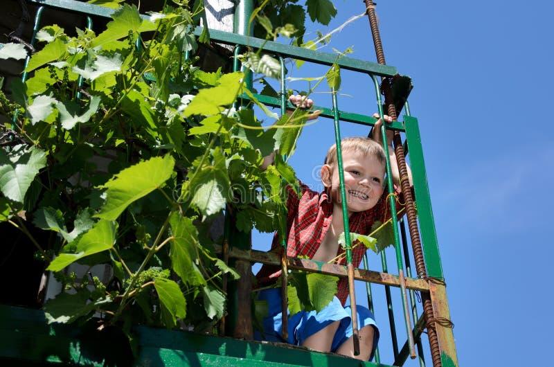 Aufgeregter kleiner Junge, der auf einem erhöhten Patio spielt stockfotografie