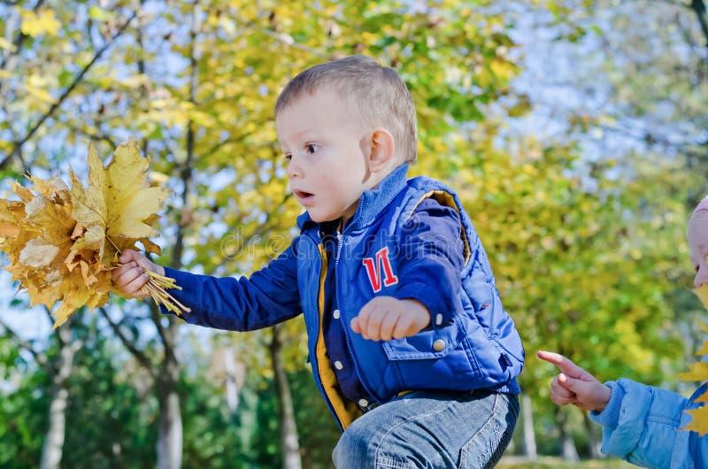 Aufgeregter kleiner Junge mit Herbstblättern lizenzfreie stockfotos