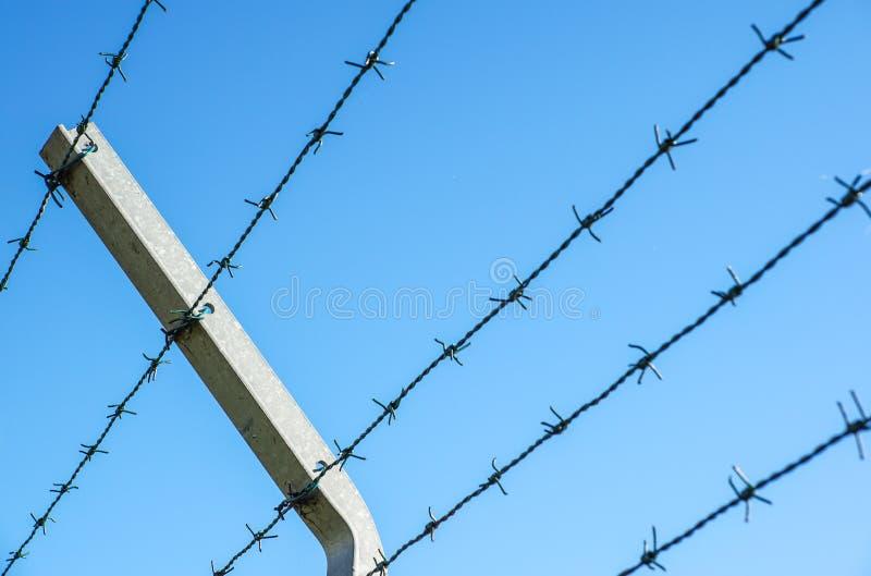 Aufgerollter Rasiermesserdraht mit seinen scharfen Stahlwiderhaken auf einen Maschenbegrenzungszaun, Sicherheit sicherstellend lizenzfreie stockfotografie