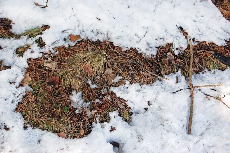 Aufgetaute Flecken im Schnee stockfotografie