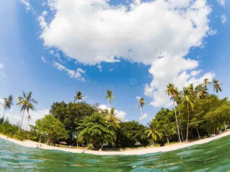 aufgeteilte Unterwasseransicht des tropischen Strandes lizenzfreies stockfoto