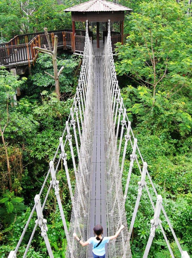 Aufhebungbrücke im Naturpark lizenzfreie stockfotografie